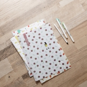 Fruit Day File Folder A4