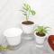 Easy Plant Self Watering Pot Flat