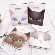 Miaomi Class Mixed Notebook A6