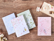 Cherry Blossom Rain Hardcover Mixed Notebook B6