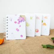Ripe Autumn Fruits Spiral Ruled Notebook Mini