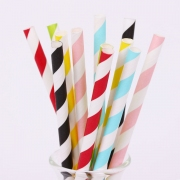 Party Paper Straws