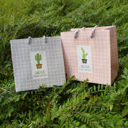Cactus Style Fancy Paper Bag