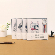 Interesting Honeys 100 Days Planner Box Set