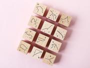 Zodiac Constellation Wooden Block Stamp