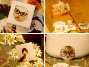 Decorative Mini Sticker Pack Cats