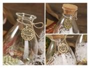 Wishing Bottle Glass Jar